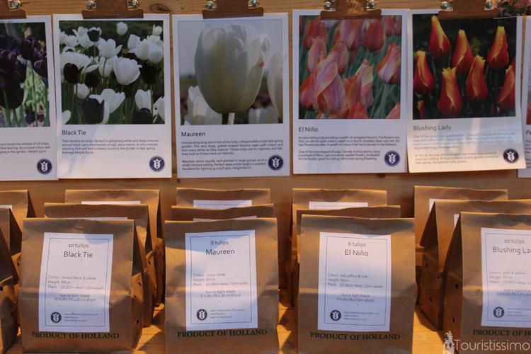Musée de la Tulipe à Amsterdam