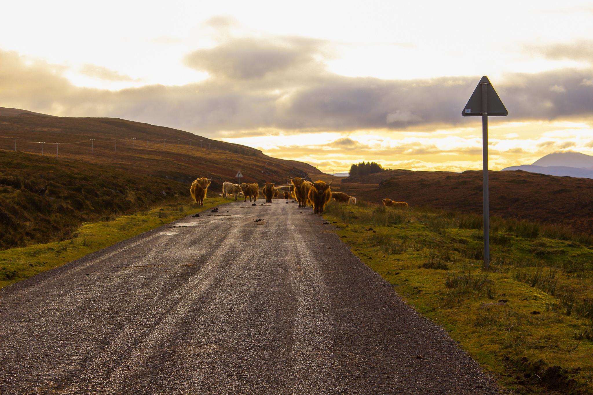 Visiter inverness